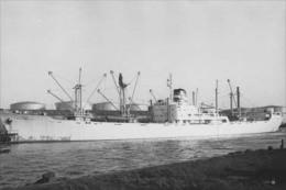 Cargo SALIMIAH - Photo Originale / Vintage Photo - Bateau/ship/schiff - Boats