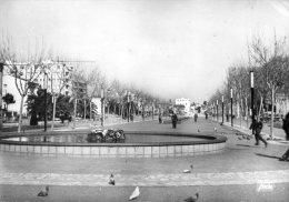 Perpignan - Cours Palmarole - La Pièce D'eau - Perpignan