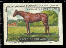Old Original Swiss Poster Stamp (advertising Cinderella, Label) Nestle - Animal Horse Cheval Pferd English Horse - Horses