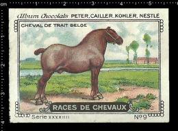 Old Original Swiss Poster Stamp (advertising Cinderella, Label) Nestle - Animal Horse Cheval Pferd Belgian Draft Horse - Horses
