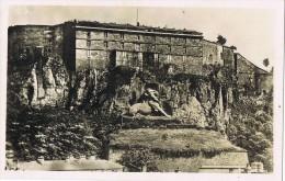 5189. Postal BELFORT (Jura) Canton Belfort, Chateau Et Le Lion - Belfort – Le Lion