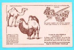 BUVARD BUVARDS Algerie Algeria France Publicité Pub Papier Paper Cahiers Ronsard Chameau Dromadaire Dromedary Camel - Animales