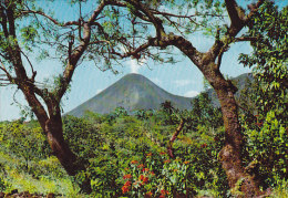 """El Salvador PPC Volkan De Izalco Y Flor De Pascua""""Krüger"""" Card Karte (2 Scans) - El Salvador"""