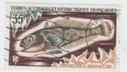 TAAF N° 44 YVERT  POISSONS  DIVERS - Terre Australi E Antartiche Francesi (TAAF)