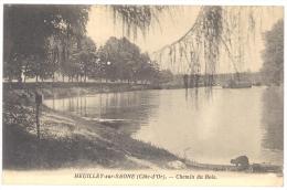 CPA 21 - HEUILLEY Sur SAONE (Côte D'Or)  - Chemin Du Bois - Autres Communes
