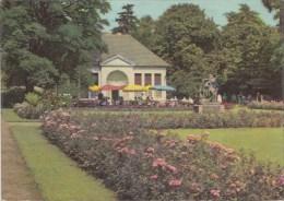 TZU272 Dessau Im Stadtpark   2  Scans - Dessau