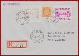 Feldpost Norwegen Als Einschreiben  Gelaufen 1982 Mit Feldpoststempel - Covers & Documents