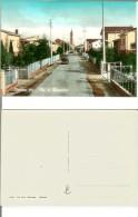 Renazzo (fraz. Di Cento - Prov. Ferrara): Via IV Novembre. Cartolina B/n Acquerellato Anni '50 (fiat 124, Trattore) - Ferrara