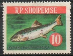 Albania 1964 - Trota Del Lago Ohrid, Lake Ohrid Trout Pesci Fish MNH ** - Albanie