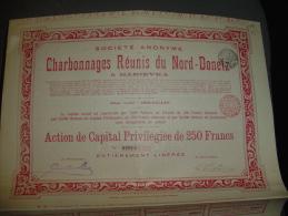 """Action De Capital""""Charbonnages Réunis Du Nord Donetz à Marievka""""1905 Russie  Russia Charbon Coal - Russie"""