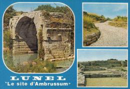 Carte Postale 34. Lunel  Site De Fouilles Archéologique D'Ambrussum  Trés Beau Plan - Lunel