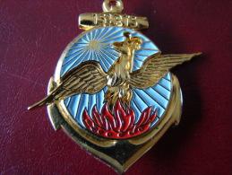 INSIGNE TROUPES DE MARINE 15e RTS ,doré  - A.BERTRAND ATLAS - Marine