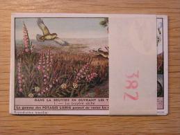 DANS LA BRUYERE EN OUVRANT LES YEUX 382 Liebig Série Complète De 6 Chromos Trading Cards Chromo - Liebig