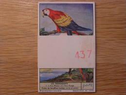 LES PERROQUETS 437  Liebig Série Complète De 6 Chromos Trading Cards Chromo - Liebig