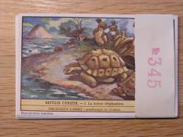 REPTILES CURIEUX 345 Turtle Tortue Liebig Série Complète De 6 Chromos Trading Cards Chromo - Liebig