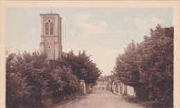 BRETIGNOLES-SUR-MER - Paysage à L'église - Bretignolles Sur Mer