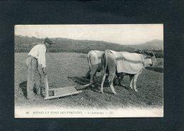 PAU /  BAYONNE  SCENES ET TYPES DES PYRENEEES  METIER  PAYSAN LE LABOURAGE  CIRC  OUI / 1912 - Autres Communes