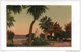 (06) ANTIBES - Square Du Poilu Et Monument Du Roi Albert. - Antibes