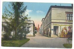 LIPIK Hotel DEPANDANS Year 1930 Cpl. - Slovénie