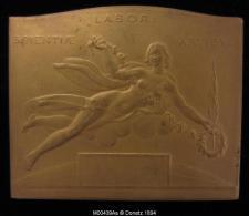M00439A Exposition Universelle De 1935, Bruxelles Et Allégories Et Une Allégorie Au Revers, 182 G - Belgium