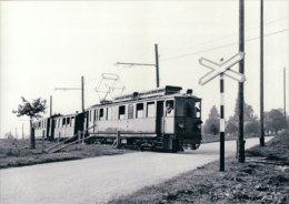 Chemin De Fer Nyon-St Cergue-Morez, Train Près Trelex  Photo 1963 BVA, NStCM 152.2 - VD Vaud