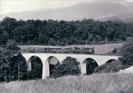 Chemin De Fer Nyon-St Cergue-Morez, Train Près Givrins  Photo 1967 BVA, NStCM 152.3 - VD Vaud