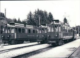 Chemin De Fer Nyon-St Cergue-Morez, Train à St Cergue  Photo 1971 BVA, NStCM 152.8 - VD Vaud
