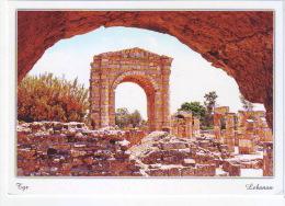Postcard Tyr  from Lebanon  , carte postale Liban