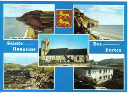 Carte Postale 14. Sainte-Honorine-des-Pertes  Trés Beau Plan - France