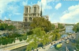 7-fra5. Postal Francia. Paris Catedral De Notre Dame - Notre Dame De Paris