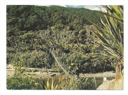 Cp, Nouvelle Zélande, Heapy Track, Swing Bridge Over Kohaihai River, Voyagée - Nouvelle-Zélande