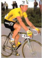 Thème - Cyclisme - Sean Kelly - Cycling
