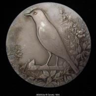 M00503 Ornithologie Mérite, Meerschaert, Juge A.O.B. Et Oiseau Sur Branche, 48 G - Belgium