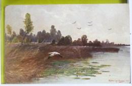 Litho Chromo Illustrateur Mueller Canard REHN & LINZEN 311 Voyagé 1914 Timbre Cachet Goldberg Et Paris Distribution - Mueller, August - Munich