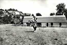 Bouches Du Rhone -gd Format -ref K761-oustau De Baumaniere -le Manege Du Club De Carita -cheval -chevaux - - France