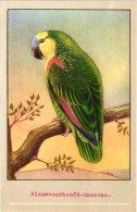 13 Old Postcards -  Parkieten En Pagegaaien ( Parrot & Canary Bird - Peruches - Advertisin Bird Food SLUIS - Autres