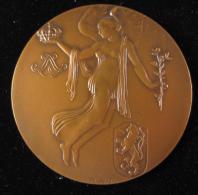 M00717 CENTENAIRE BELGIQUE 1830 - 1930, Epée, Blés, Allégorie, écu, Par Rau 168 G. - Belgium