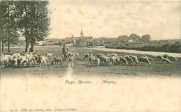 57 METZ PAYS MESSIN MAGNY BERGER TROUPEAU DE MOUTONS - Metz