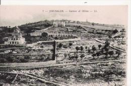 JERUSALEM 7 GARDEN OF OLIVES - Israele