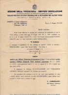 012 - ALBUM DE AG. - REGNO D'ITALIA - ANNO 1941 - SEZIONE DELLA VITICOLTURA - SERVIZIO DISTILLAZIONE - Old Paper