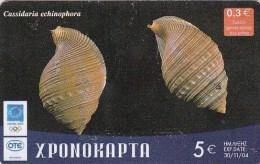 Greece, Xr112, Shells, Neverita Josephinia, 2 Scans. - Greece