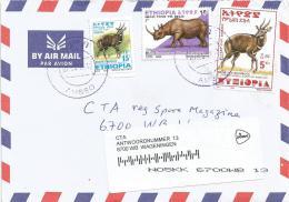 Ethiopia 2013 Ambbo Antilope Bushbuck Rhinoceros Cover - Ethiopië