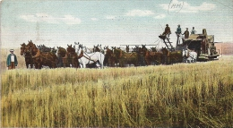 ST LOUIS MISSOURI A VERIFIER 1907 COMBINED HARVESTER AND THRASHER GROS PLAN BATTEUSE ATTELAGE 30 CHEVAUX ? ED SELIGE - St Louis – Missouri