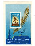 TIMBRE - URSS UNION SOVIETIQUE & RUSSIE - ANNEE 60 - BLOC NON DENTELE OBLITERE GOMME - 1923-1991 URSS