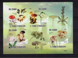 SAO TOME AND PRINCIPE  Mushrooms  (not Dentate) - Champignons