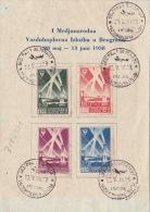 1938 JUGOSLAVIA  Série AU PROFIT AERO-CLUB / Belgrade / Cachet AVION - 1931-1941 Kingdom Of Yugoslavia