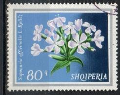 Albania 1974 - Pianta Medicinale Saponaria, Medicinal Plant Soapwort Fiori Flowers - Albanie