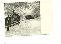 Oteppe Hirondelle Poésie Hivernale Winterpoesie - Burdinne