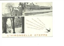 Oteppe Hirondelle Format CP Modrne ( Pas Un Dos CP ) - Burdinne