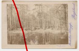PostCard - Original Photo - Ca. 1915 - Rokitnosümpfe, Rokitno, Pripjatsümpfe, Pinskische Sümpfe, Polesische Sümpfe - Bielorussia